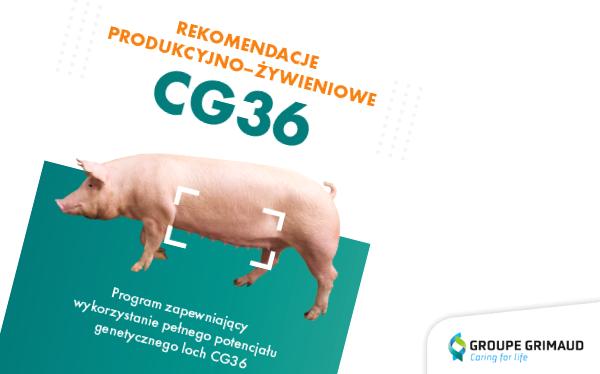 Zaktualizowane rekomendacje produkcyjne dla loszek CG36!