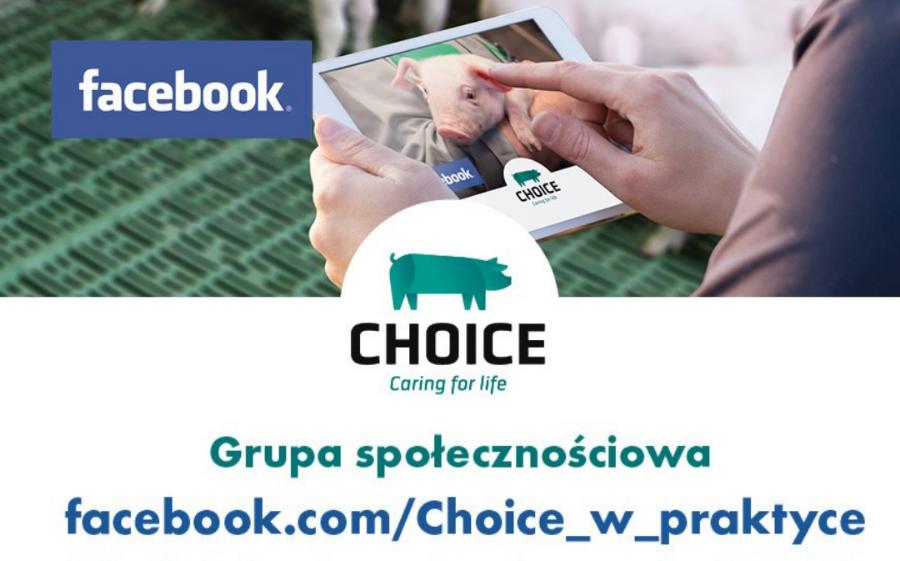 Grupa społecznościowa choice – dołącz teraz!